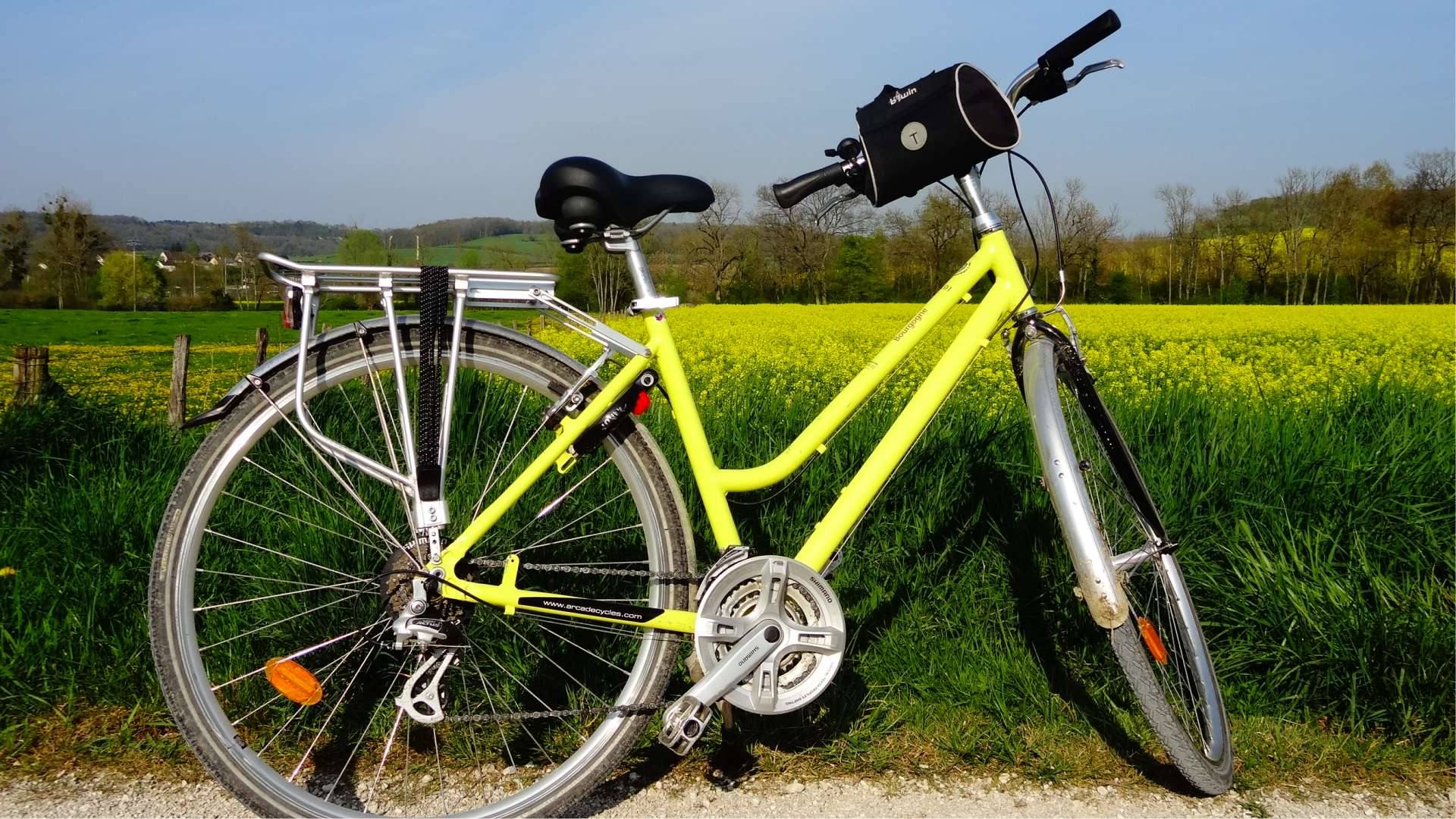 Cyclistes dans un vignoble