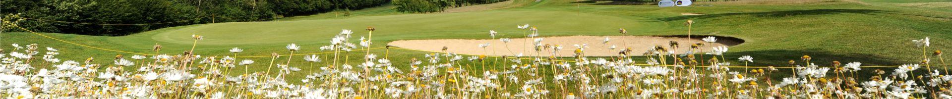 Le golf de l'Aa Saint-Omer