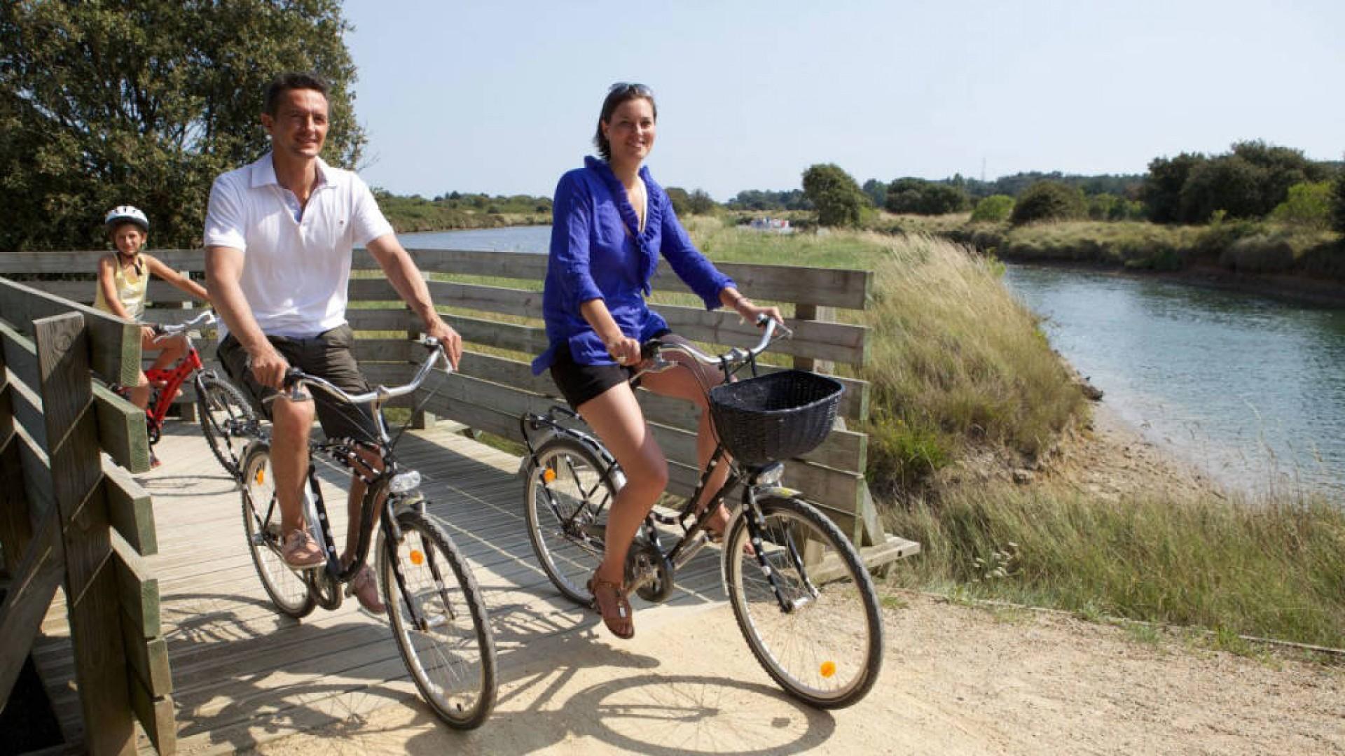 Balade en vélo sur Avignon